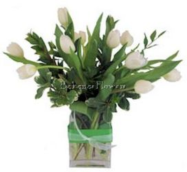 Irish Tulips from Bakanas Florist & Gifts, flower shop in Marlton, NJ