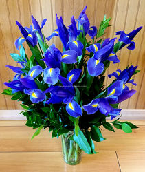 Summer Iris from Bakanas Florist & Gifts, flower shop in Marlton, NJ