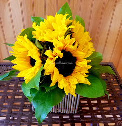 Rustic Sunflowers from Bakanas Florist & Gifts, flower shop in Marlton, NJ