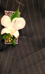 Premier Collection Orchid Boutonniere from Bakanas Florist & Gifts, flower shop in Marlton, NJ
