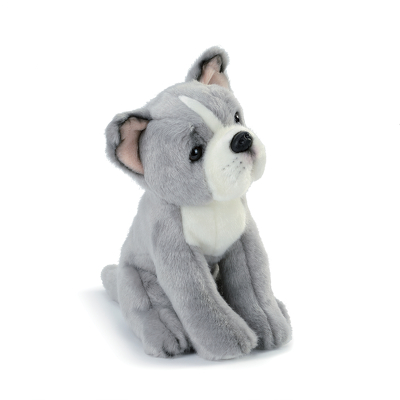Pittie Mix Rescue Breed Plush Toy from Bakanas Florist & Gifts, flower shop in Marlton, NJ