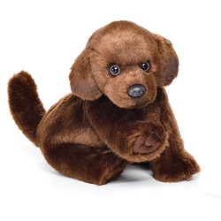 Chocolate Lab Plush from Bakanas Florist & Gifts, flower shop in Marlton, NJ