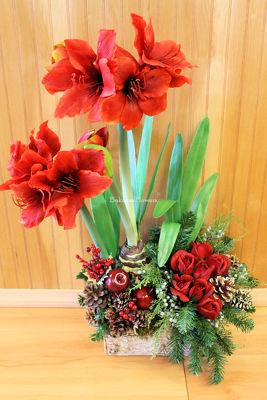 Bakanas flowers fresh marlton floral arrangements flower shop winter amaryllis silk arrangement from bakanas florist gifts flower shop in marlton nj click here for larger image mightylinksfo