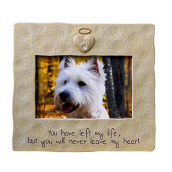 Pet Memorial Frame from Bakanas Florist & Gifts, flower shop in Marlton, NJ