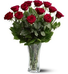 Dozen Red Roses from Bakanas Florist & Gifts, flower shop in Marlton, NJ