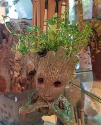 Groot-Like Tree-Man Planter from Bakanas Florist & Gifts, flower shop in Marlton, NJ