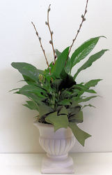Peace Lily Posh from Bakanas Florist & Gifts, flower shop in Marlton, NJ