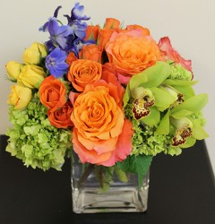 Our Signature Color Burst Cube Bouquet from Bakanas Florist & Gifts, flower shop in Marlton, NJ