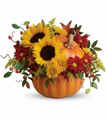 Pretty Pumpkin Bouquet from Bakanas Florist & Gifts, flower shop in Marlton, NJ